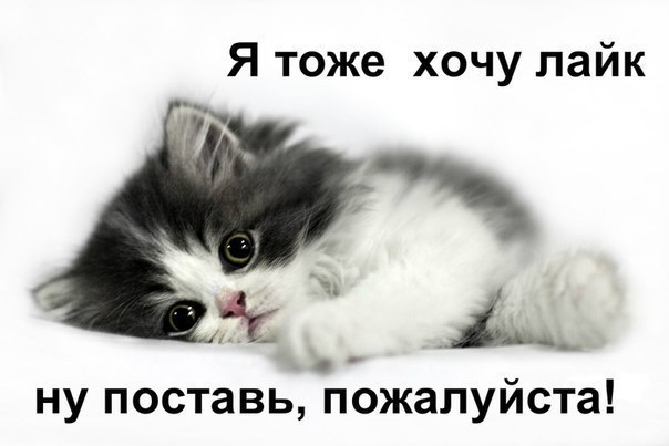 Статусы В Контакт Прикольные Смешные